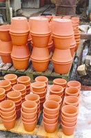 Flower pots for West Dean